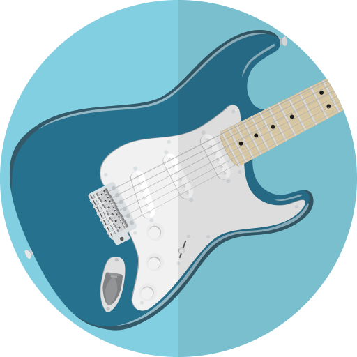Guitar guides and equipment