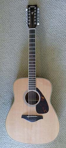 12-String Acoustic Guitar